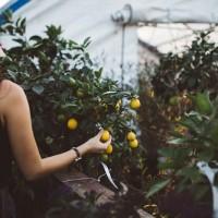 Profesjonalna pomoc w zakładaniu ogrodów
